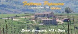 foto-fattoria-pepenero-siena-720x320